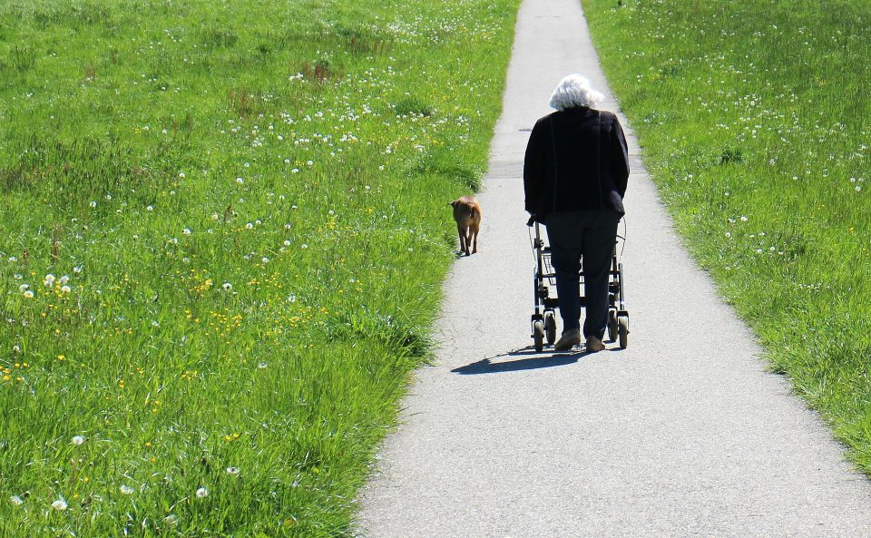 How can we prevent the elderly from falling?